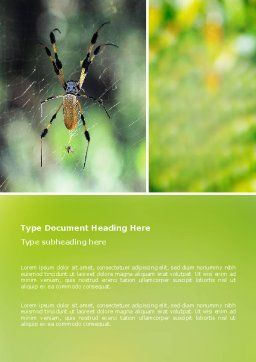 Spider Word Template, Cover Page, 02704, Agriculture and Animals — PoweredTemplate.com