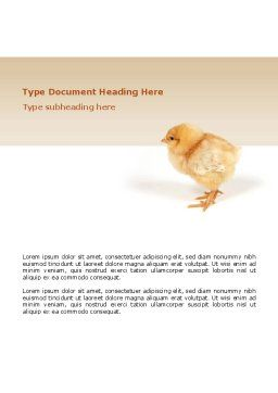 Chicken Word Template, Cover Page, 02737, Agriculture and Animals — PoweredTemplate.com