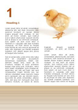 Chicken Word Template, First Inner Page, 02737, Agriculture and Animals — PoweredTemplate.com