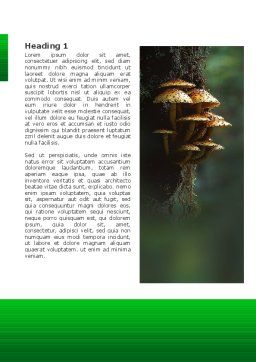 Fungi In The forest Word Template, First Inner Page, 02756, Nature & Environment — PoweredTemplate.com