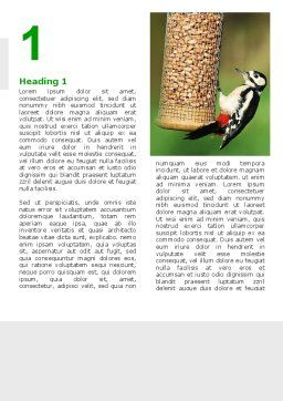 Birdfeeder Word Template, First Inner Page, 02796, Nature & Environment — PoweredTemplate.com