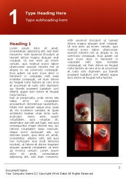 Santa Claus Coming Word Template, First Inner Page, 02845, Holiday/Special Occasion — PoweredTemplate.com