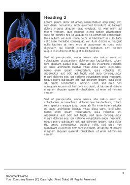 Liver Word Template, Second Inner Page, 03025, Medical — PoweredTemplate.com