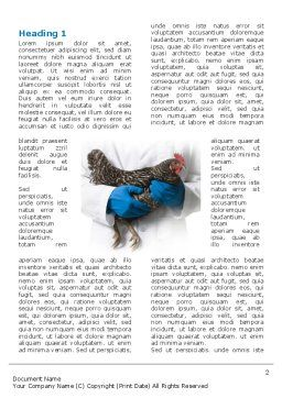 Hen Word Template, First Inner Page, 03147, Agriculture and Animals — PoweredTemplate.com
