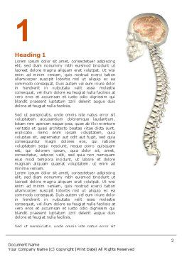 Spinal Cord Word Template First Inner Page