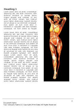 Female Body Anatomy Word Template, First Inner Page, 03418, Medical — PoweredTemplate.com