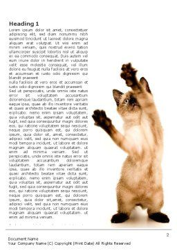 Kitten Word Template, First Inner Page, 03459, Agriculture and Animals — PoweredTemplate.com