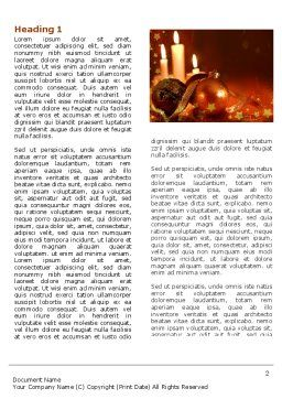 Christmas Decorations And Candles Word Template, First Inner Page, 04211, Holiday/Special Occasion — PoweredTemplate.com