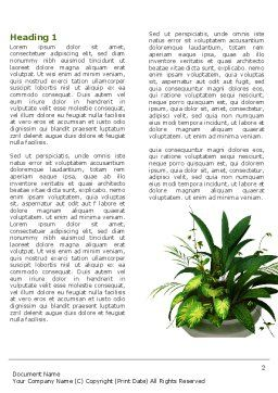 House Plant Word Template First Inner Page