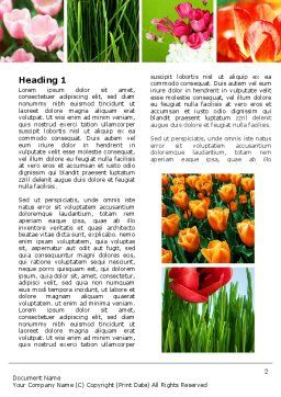 Tulips Word Template, First Inner Page, 04690, Nature & Environment — PoweredTemplate.com