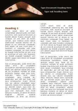 Boomerang Word Template First Inner Page