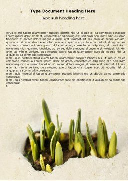 Snowdrop Word Template, Cover Page, 05170, Nature & Environment — PoweredTemplate.com