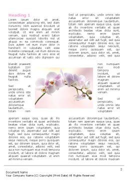 Orchid Word Template, First Inner Page, 05177, Nature & Environment — PoweredTemplate.com