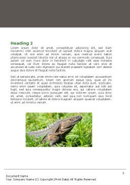 Iguana Word Template, Second Inner Page, 05414, Agriculture and Animals — PoweredTemplate.com