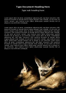 Bat-eared Fox Word Template, Cover Page, 05837, Agriculture and Animals — PoweredTemplate.com