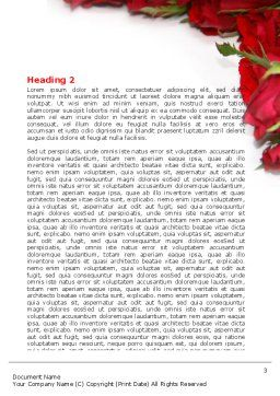 Love Word Template, Second Inner Page, 05912, Holiday/Special Occasion — PoweredTemplate.com