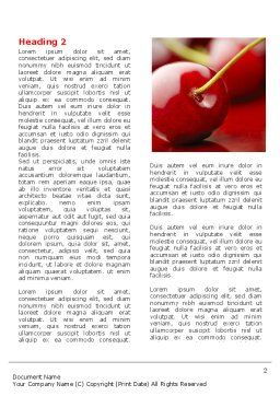 Cherry Word Template First Inner Page