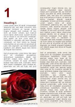 Red Passion Word Template, First Inner Page, 06144, Holiday/Special Occasion — PoweredTemplate.com