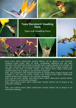 Hummingbird Word Template, Cover Page, 06176, Agriculture and Animals — PoweredTemplate.com