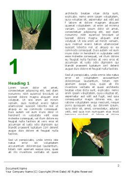 Hummingbird Word Template, First Inner Page, 06176, Agriculture and Animals — PoweredTemplate.com