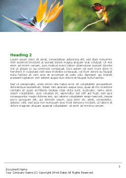 Hummingbird Word Template Second Inner Page