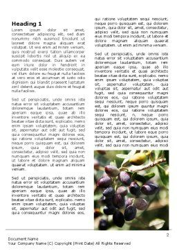 Olive Word Template, First Inner Page, 06286, Agriculture and Animals — PoweredTemplate.com