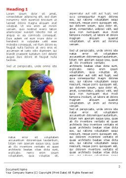 Australian Parrot Word Template, First Inner Page, 06431, Agriculture and Animals — PoweredTemplate.com