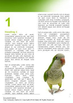 Quaker Parrot Word Template, First Inner Page, 06678, Nature & Environment — PoweredTemplate.com