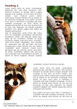 Raccoon Word Template First Inner Page