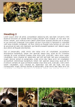 Raccoon Word Template, Second Inner Page, 06692, Agriculture and Animals — PoweredTemplate.com