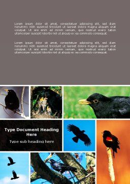 Free Blackbird Word Template Cover Page