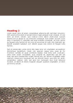Red Leaf Word Template, Second Inner Page, 06765, Consulting — PoweredTemplate.com