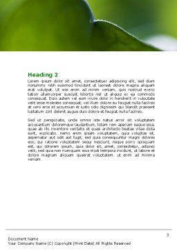 Leaf Word Template, Second Inner Page, 06810, Nature & Environment — PoweredTemplate.com