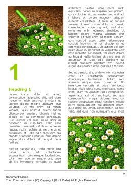 Blooming Path Word Template, First Inner Page, 07145, Nature & Environment — PoweredTemplate.com