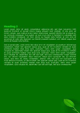 New Green Leaf Word Template, Second Inner Page, 07736, Nature & Environment — PoweredTemplate.com