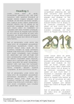 Financial Year 2011 Word Template First Inner Page