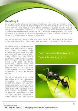 Ant Word Template, First Inner Page, 08356, Education & Training — PoweredTemplate.com