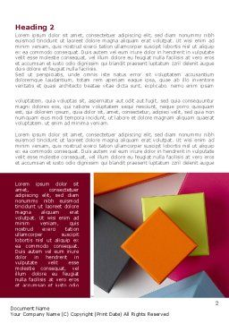 Fancy Boxes Word Template, First Inner Page, 08521, Business — PoweredTemplate.com