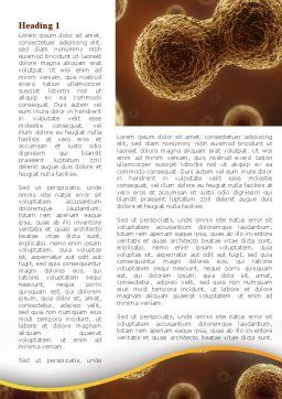 Cell Meiosis Word Template, First Inner Page, 08793, Medical — PoweredTemplate.com
