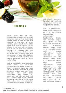 Mulberry Tea Word Template, Second Inner Page, 08933, Food & Beverage — PoweredTemplate.com