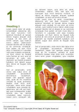 Tooth In Section Word Template, First Inner Page, 08956, Medical — PoweredTemplate.com