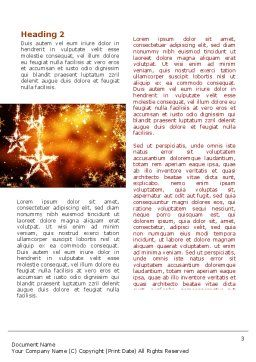 Happy New Year Theme Word Template, Second Inner Page, 08965, Holiday/Special Occasion — PoweredTemplate.com