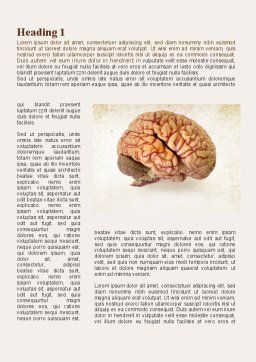 Human Brain As Anatomical Preparation Word Template, First Inner Page, 09280, Medical — PoweredTemplate.com