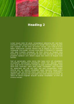 Leafs Cells Word Template, Second Inner Page, 09496, Nature & Environment — PoweredTemplate.com