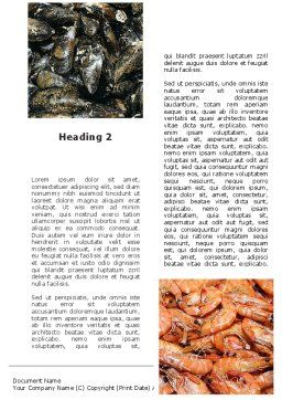 Shrimps And Crabs With Oysters Word Template, Second Inner Page, 09746, Food & Beverage — PoweredTemplate.com