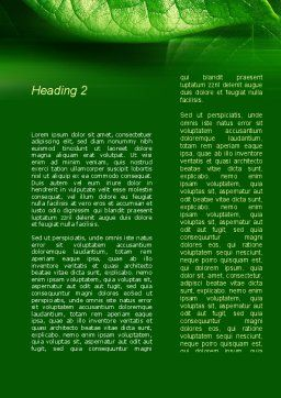 Shiny Green Leaf Word Template, Second Inner Page, 09768, Nature & Environment — PoweredTemplate.com