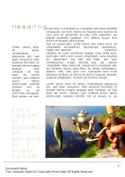 Summer Fishing Word Template, First Inner Page, 09837, Holiday/Special Occasion — PoweredTemplate.com