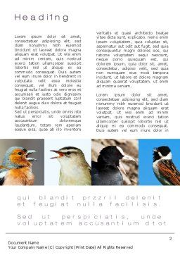 Birds Word Template, First Inner Page, 10528, Education & Training — PoweredTemplate.com