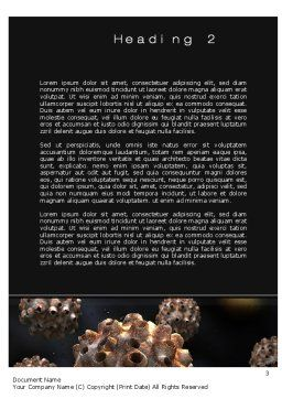 Virus Invasion Word Template, Second Inner Page, 10558, Medical — PoweredTemplate.com