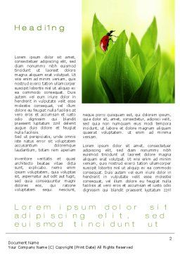 Ladybug on Grass Word Template, First Inner Page, 10670, Nature & Environment — PoweredTemplate.com